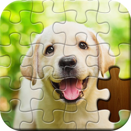 Jigsaw Puzzle  4.48.037 MOD APK Dwnload – free Modded (Unlimited Money) on Android
