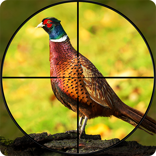 Pheasant Shooter: Crossbow Birds Hunting FPS Games 1.1 MOD APK Dwnload – free Modded (Unlimited Money) on Android
