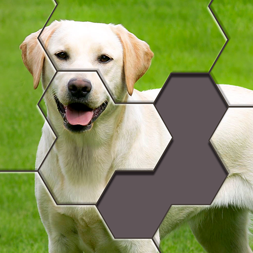 Hexa Jigsaw Puzzle ® 44.01 MOD APK Dwnload – free Modded (Unlimited Money) on Android
