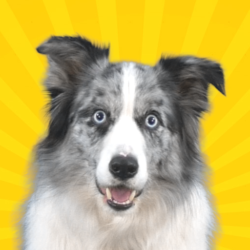 Real Pets™ by Fruwee 297 MOD APK Dwnload – free Modded (Unlimited Money) on Android