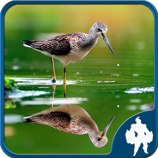 Reflection Jigsaw Puzzles 1.9.17 MOD APK Dwnload – free Modded (Unlimited Money) on Android