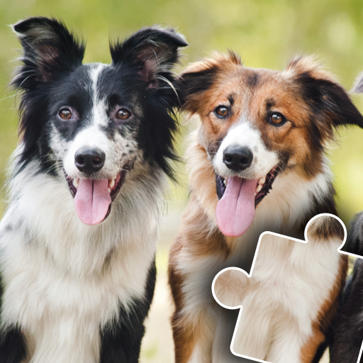 Dogs & Cats Puzzles for kids & toddlers 🐱🐩 🐾 2021.89 MOD APK Dwnload – free Modded (Unlimited Money) on Android