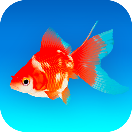 Goldfish 3D – Relaxing Aquarium Fish Tank 1.50 MOD APK Dwnload – free Modded (Unlimited Money) on Android