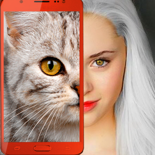 Kittens: what cat are you? prank 2.7 MOD APK Dwnload – free Modded (Unlimited Money) on Android