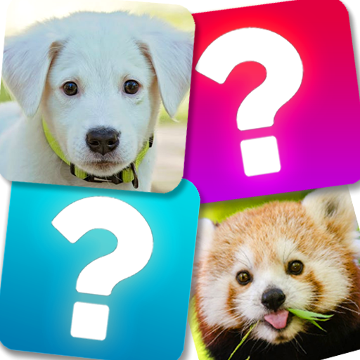 Memory Game: Animals 5.1 MOD APK Dwnload – free Modded (Unlimited Money) on Android