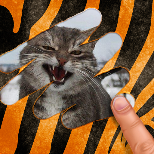 Scratch and guess the animal 9.4 MOD APK Dwnload – free Modded (Unlimited Money) on Android
